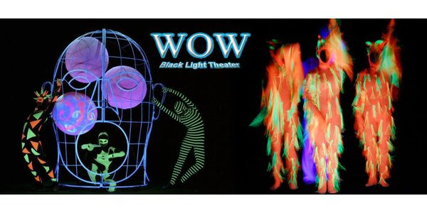 Vstupenka do úžasného černého divadla WOW Show