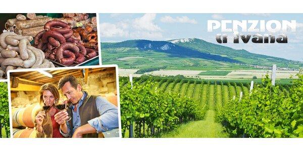 Dovolená s degustací vína a rautem na jižní Moravě