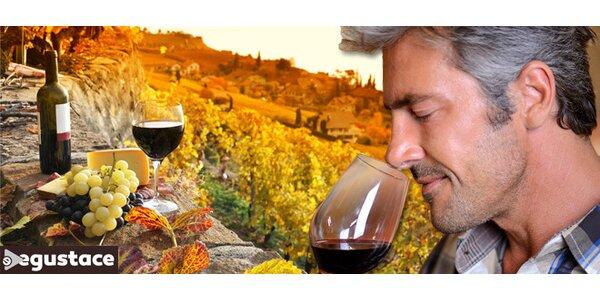Exluzivní online degustace vína