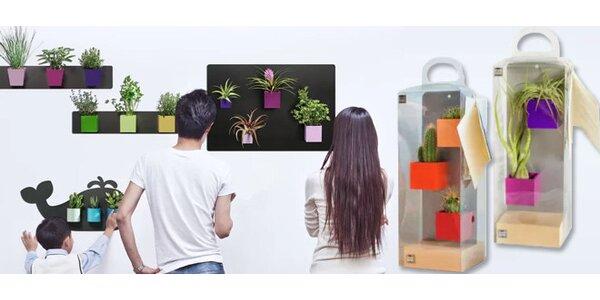 Magnetické květináče v dárkovém balení