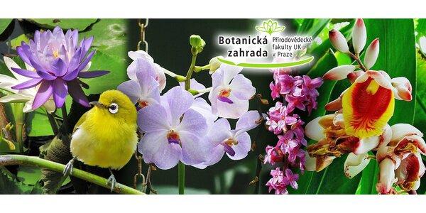 Vstupy do skleníků Botanické zahrady UK