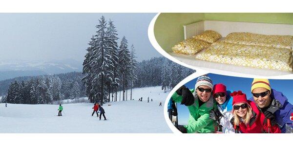Užijte si týden aktivní zimní dovolené na Lipně v apartmánu pro 4 až 6