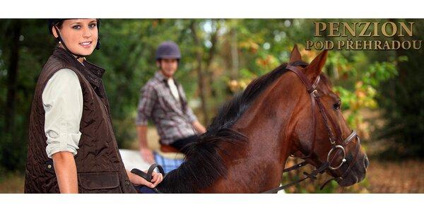 60-120 minut projížďky na koni nebo poníkovi