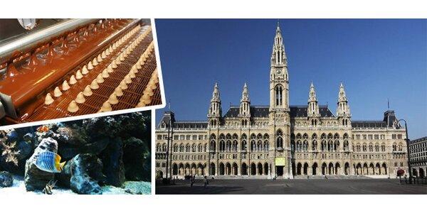 Čokoládovna a podmořský svět ve Vídni
