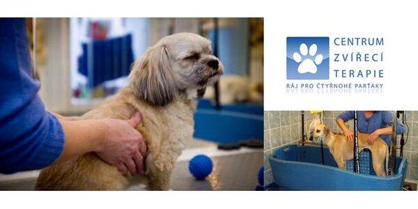 125 Kč za poukaz na služby Centra zvířecí terapie v hodnotě 250 Kč.