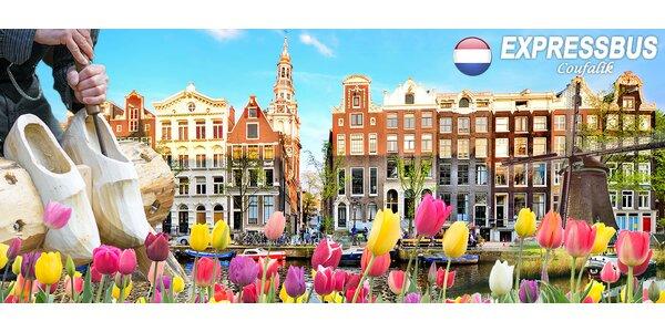 Nabitý poznávací zájezd do Holandska s ubytováním