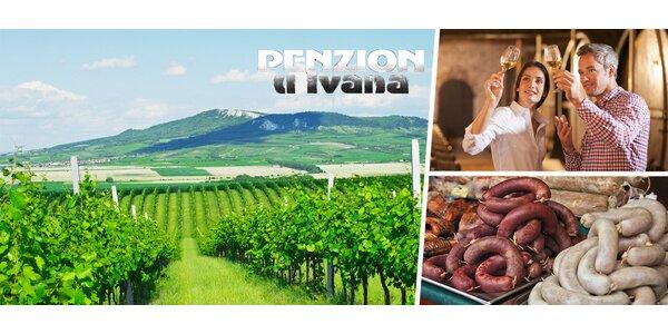 Víno a odpočinek pro dva v Penzionu u Ivana