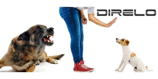 Řešení problémového chování vašeho psa - individuální lekce