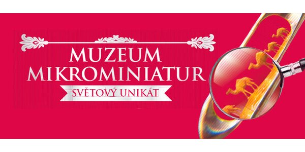 Vstupy do muzea unikátních mikrominiatur