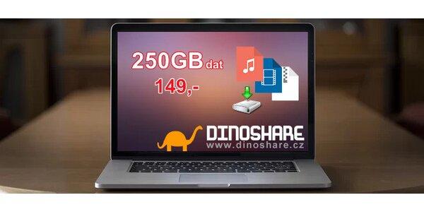 50% sleva na 250 GB videa, hudby a dat
