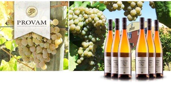 6 portugalských Vinho Verde z tradičních odrůd Alvarinho/Trajadura