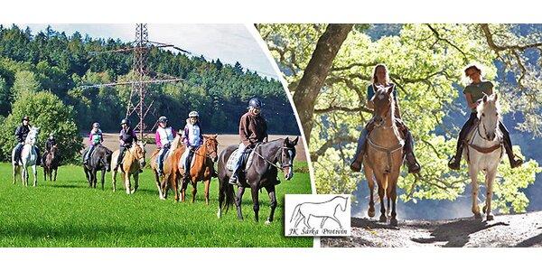 Vyjížďky na koních pro děti i dospělé