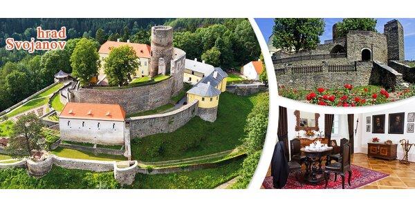 Zvýhodněné vstupné na hrad Svojanov