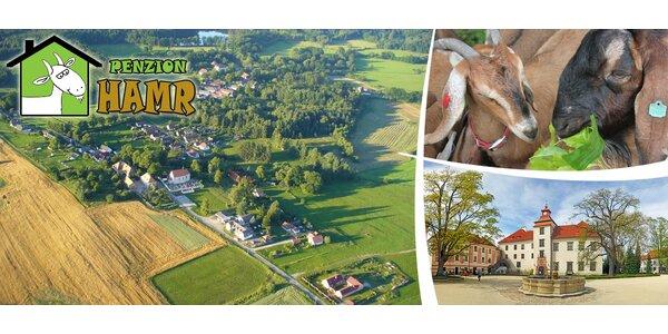 4 dny na farmě v Jižních Čechách