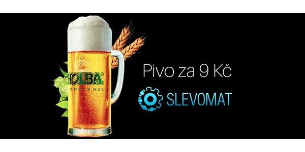 Půllitr piva Holba Šerák 11°