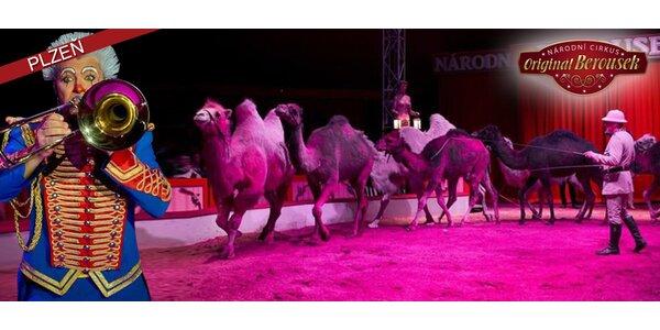 Lístky do Národního Cirkusu Originál Berousek