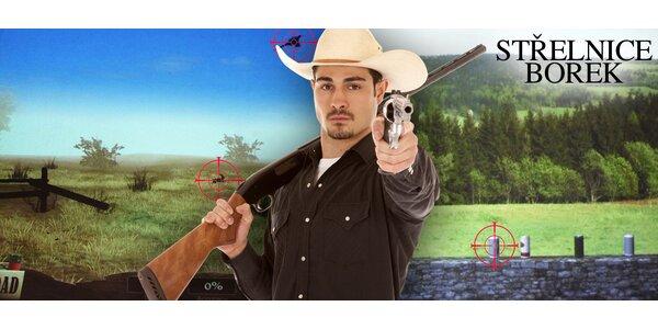 Střelba na laserové střelnici