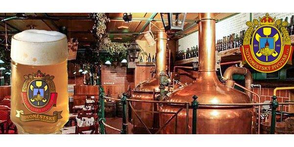 Novoměstský pivovar – prohlídka a ochutnávka