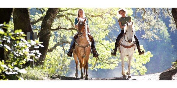 Nezapomenutelné léto v koňském sedle