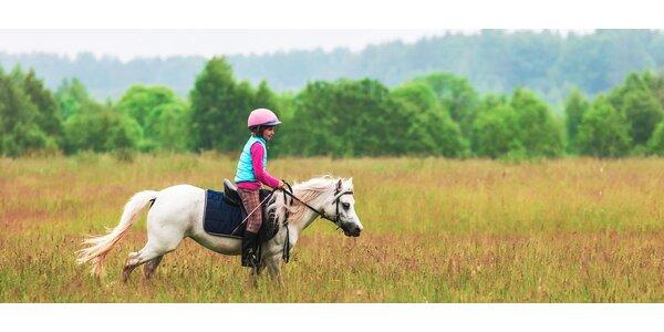 Týdenní tábor s koňmi v jižních Čechách pro děti 8 - 17 let