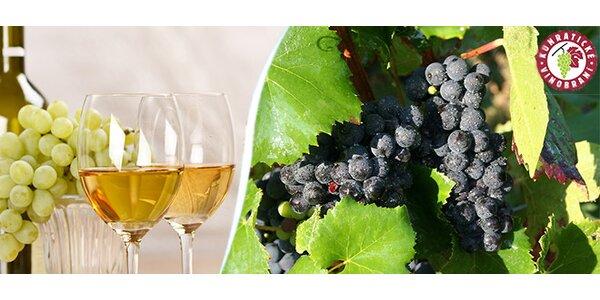 Košt vína s pravým moravským vinařem - Kunratické vinobraní 26.– 27. 9. 2015