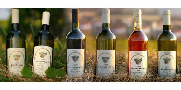 6 vín z Vinařství Antonín Straka