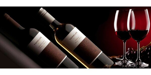 Sada argentinských vín Los Toneles