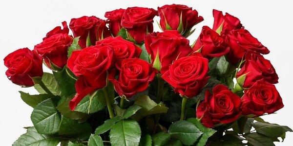 Rudé růže včetně lístečku se vzkazem