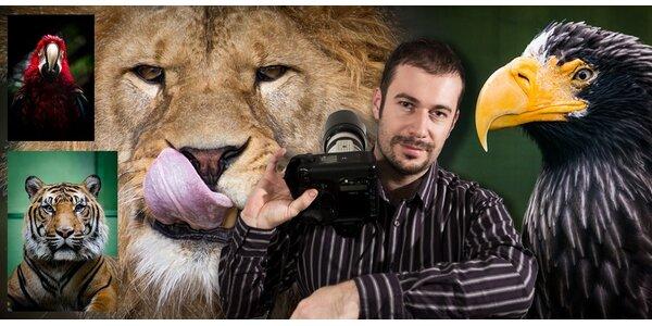 Fotografujte zvířata (nejen v zoo) jako profesionálové
