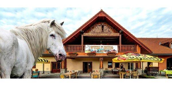Ubytování pro dva v hotelu na koňské farmě