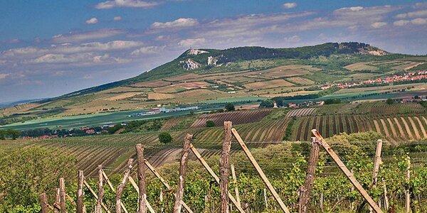 3denní vinařský pobyt pro dva ve Valticích