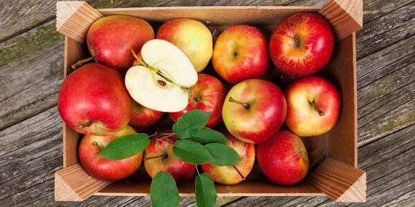 Prodej jablek v Ovocných sadech Bříství u Kolína