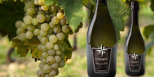 Italské šumivé víno Prosecco D.O.C. Treviso
