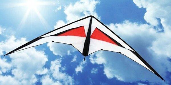 Létající draci - 2 druhy