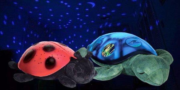 LED svítící želvička / beruška