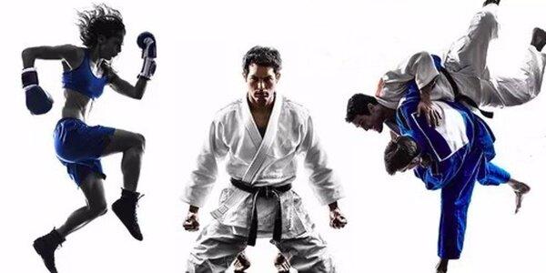 Kurzy sebeobrany - Krav Maga a Judo