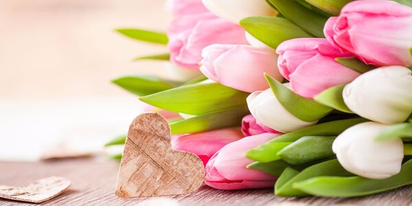 Kytice barevných tulipánů