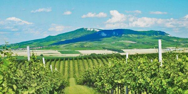 Pohoda u vína na jižní Moravě včetně polopenze
