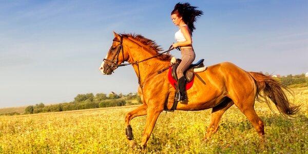 Projížďka na koni pro začátečníky i pokročilé