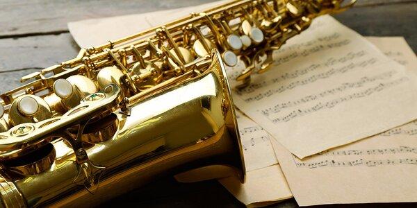 Lekce hudby (saxofon nebo kytara)
