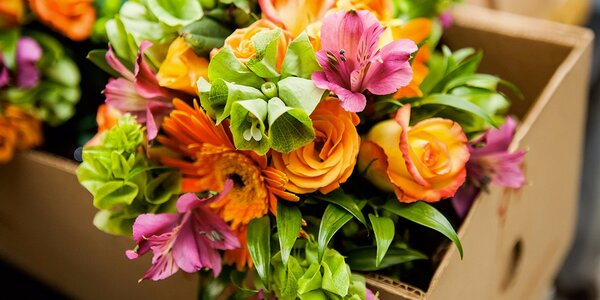 Floristické dílny pro rodiče a děti