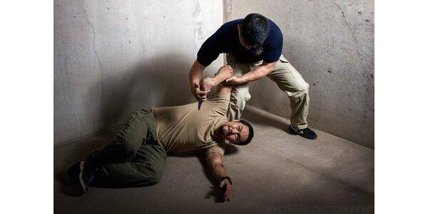 1x vstup na trénink bojového umění Systema