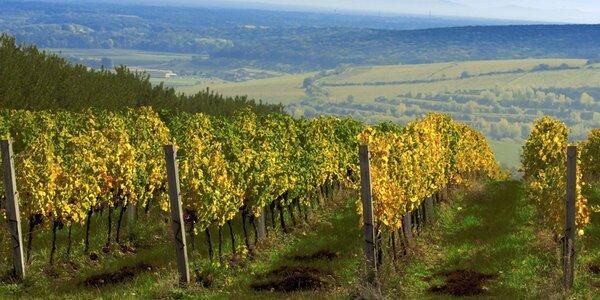 Pobyt s degustací vína na jižní Moravě