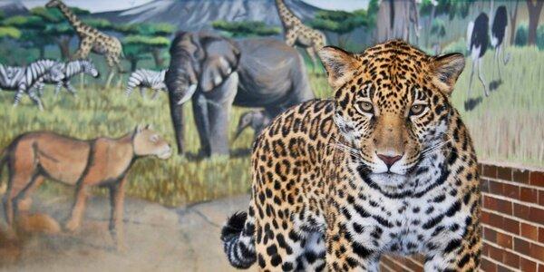 Hurá za zvířátky: Vstupenky do zoo v Hodoníně