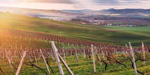 Báječná dovolená v kraji vína a pohostinnosti