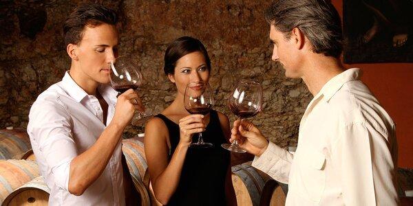 Vinařský kurz Wine Specialist Basic
