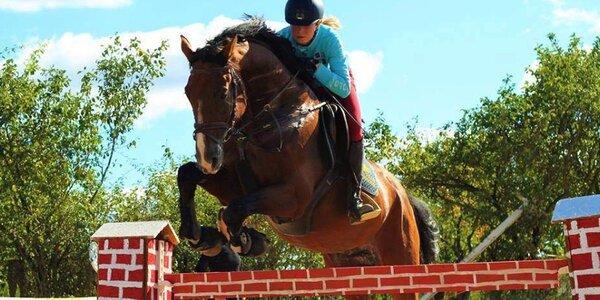 Lekce sportovního ježdění na koni