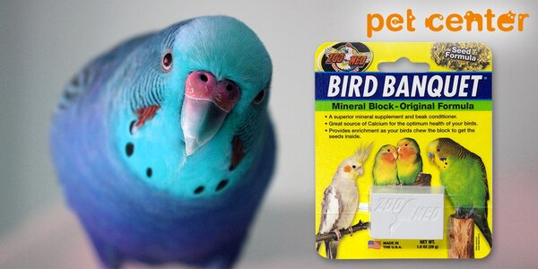 Vápníková svačina: 2 minerální bloky pro ptáky