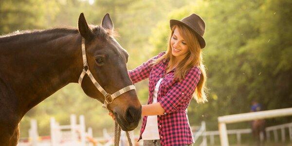 Den s koňmi na Stable Willow