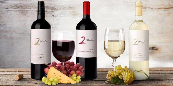 Nejlepší vína z Argentiny - ochutnejte skvosty značky Bodega Los Toneles